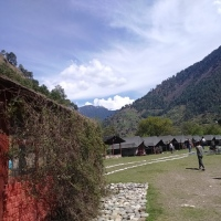 Green Getaway: Amidst the flora and fauna of Tirthan Valley