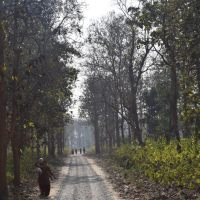 Meeting The Tribals In Corbett National Park