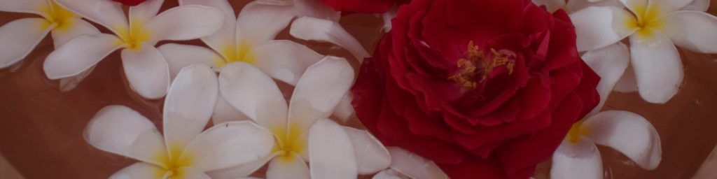 Flowers, roses and champa,