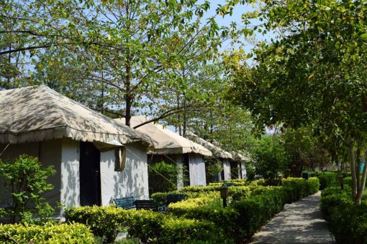 Luxury tents, The Golden Tusk, Corbett National Park